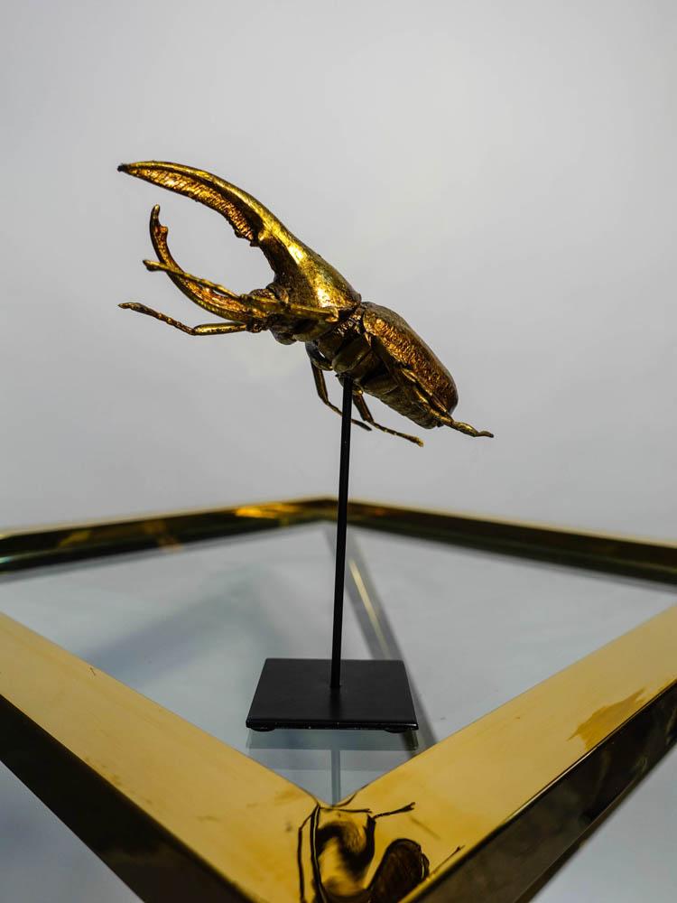 Kever Goud Op Statief